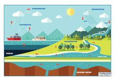 Help your children to understand the water cycle with our PDF / Powerpoint guide. Also includes an image pack, labelling activity, glossary, wordsearch and display banner.