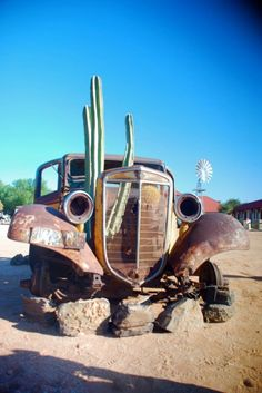 Rusted car with cactus near Fish River Canyon, Namibia