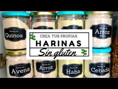 Como hacer tortillas sin gluten / How to make gluten free tortillas Vegan Milk, Vegan Vegetarian, Vegan Probiotics, Vegan Recipes, Cooking Recipes, Healthy Recipes For Weight Loss, Healthy Foods, Vegan Cake, Lactose Free