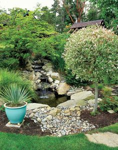 A former hot tub turned into a garden pond. Love the repurposing.