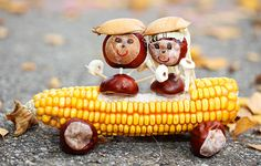 Chestnut couple in a corn cob convertible - handicrafts with children in autumn with oak . Animal Crafts For Kids, Craft Activities For Kids, Preschool Crafts, Diy For Kids, Autumn Crafts, Nature Crafts, Autumn Decorating, Fall Decor, Paper Flower Patterns