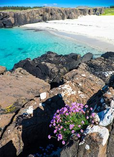 Langamull Beach Isle of Mull