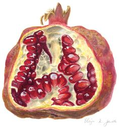 Pomegranate ... Adding this art as we have a pomegranate bush in our AZ backyard, along with out Cacti & Succulents!