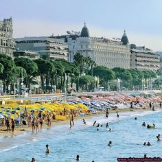 Cannes, France......my most favorite place in the world!