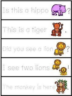 Zoo Animal Sentence