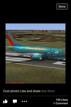 Miami dolphins plane Miami Dolphins Memes, Dolphins Cheerleaders, Nfl Miami Dolphins, Nfl Cheerleaders, Pro Football Teams, Sports Team Logos, Football Love, Football Is Life, Dolphin Quotes