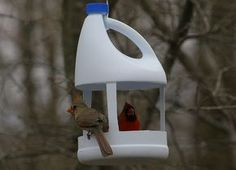 by Indiana Ivy Nature Photographer, not made … - Diy Craft Ideas Bird Feeder Craft, Bird House Feeder, Recycled Crafts, Diy And Crafts, Crafts For Kids, Plastic Bottle Crafts, Recycle Plastic Bottles, Diy Bottle, Plastic Containers