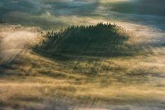 Hypnotizing Forests Of Slovenia Capture By Filip Eremita