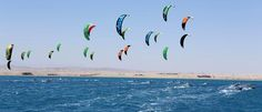African Kite Racing Championships in Soma Bay 2014 Results & Updates Kitesurfing, Red Sea, Egypt, Competition, Around The Worlds, African, Racing, Tours, Animals