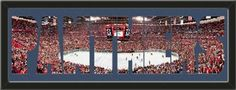 Personalize Your Name With Framed Florida Panthers BankAtlantic Center Stadium Large Panoramic Behind Your Name Or Purchase as -PANTHERS- Letter Cut Out-Framed Awesome & Beautiful