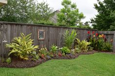 Another fence cover up on the side yard. Stained glass windows and new plantings. Slowly the ugly fences are disappearing, or at least diminishing. (my yard)