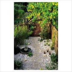 1000 Images About Urban Garden Design Ideas Ideas