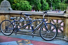 Image detail for -Bicycle built for two Photograph by Paul Ward - Bicycle built for two ...