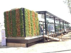 "Metrobus, Line 5 with Vertical Gardens. So proud of this. Mexico City & Metrobus the ""avant-garde"" of Latinamerican Transit"