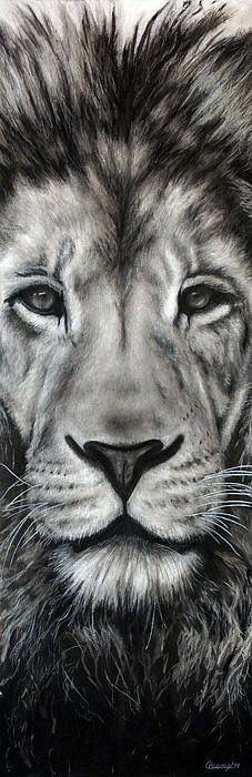 """""""Guardian"""" by Nebraska artist Courtney Kenny Porto. Leo the Lion. <----- reminds me of the lion in marina Amazing Drawings, Cool Drawings, Amazing Art, Artwork Drawings, Hipster Drawings, Awesome, Lion Art, Photocollage, Lion Tattoo"""