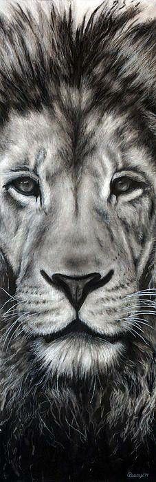 Lion's face art