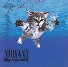 A new website called Kitten Covers features famous album sleeves remade with   cats replacing stars like Kiss, the Beatles and Nirvana. New York-based   artist Alfra Martini says Kitten Covers is a personal tribute to the classic   rock albums that influenced her own career.