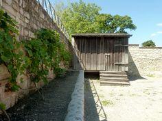 Der Archäologische Park Carnuntum im Juli 2014 - Schuppen