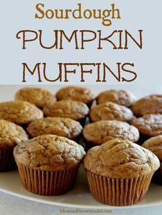 Sourdough Pumpkin Muffins Recipe Montana Homesteader Sourdough P. Sourdough Muffin Recipe, Sourdough Recipes, Sourdough Bread, Bread Recipes, Real Food Recipes, Dessert Recipes, Cooking Recipes, Desserts, Healthy Chocolate Zucchini Bread