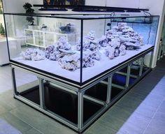Saltwater Aquarium Setup, Coral Aquarium, Saltwater Fish Tanks, Nature Aquarium, Aquarium Design, Marine Aquarium, Aquarium Fish Tank, Aquarium Ideas, Reef Aquascaping