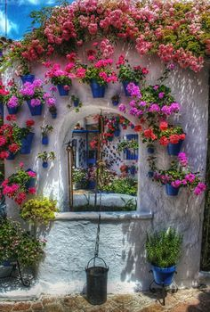 beautiful color combo... Outdoor walls, planters, curtains, etc.