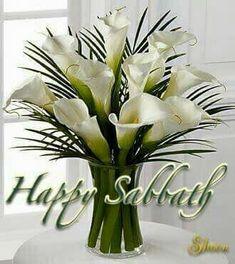 Happy Sabbath Images, Happy Sabbath Quotes, Sabbath Day Holy, Sabbath Rest, Shabbat Shalom Images, Saturday Quotes, Happy Birthday Messages, Sabbats, Trumpets