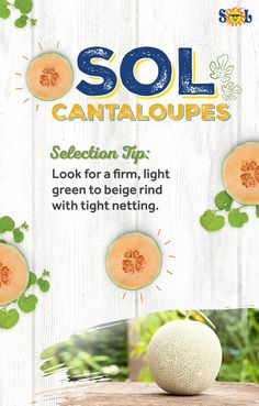Next time you're in the produce aisle, pick out the perfect cantaloupe! Cantaloupe, Fresh, Food, Essen, Yemek, Meals