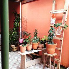 São tantas ideias pra esse jardim dos sonhos!❤️❤️❤️ #meujardim #jardimemvasos