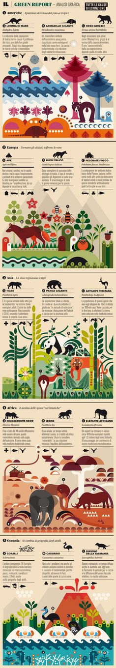 Italian Magazine - IL - Causes of extinction of animals on 5 continents. Beautiful graphics.