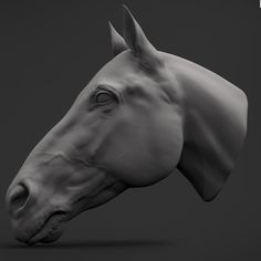 Horse's head. by Ran Manolov on ArtStation.