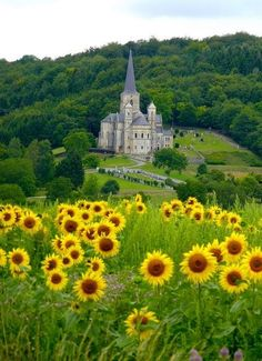 Eglise Notre Dame in Mont-Devant-Sassey, Lorraine, France (by The sunflower fields were amazing to see' Places To Travel, Places To See, Vacation Places, Vacation Destinations, Places Around The World, Around The Worlds, Beautiful World, Beautiful Places, Amazing Places