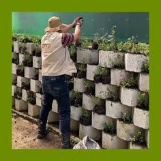 #Paisaje #Jardín #Diseñodelpaisaje #Arquitecturadelpaisaje #Gardendesigner #Jardinería #Casayjardín #Landscapedesig Prado, Instagram, Landscape Design, Medellin Colombia, Landscape Architecture, Garden Layouts, Landscaping