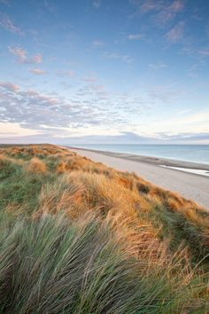 Horsey Beach in Norfolk Norfolk Beach, Suffolk Coast, Uk Beaches, Norwich Norfolk, Down South, Big Sky, British Isles, Great Britain, Beautiful Beaches