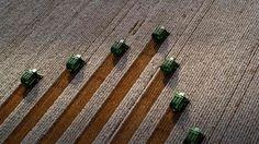 Harvesting cotton in Costa Rica (© Fernando Bueno/Getty Images)