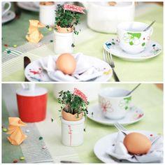 Kresse in Eierschale gepflanzt  in Eierbecher gesetzt