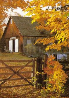 Country Home in Autumn - Woodstock, Vermont by Ron and Patty Thomas on Getty…