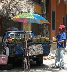 and Grab Some Fresh Coconut Water | Community Post: 17 Reasons You Should Skip The Resort And Visit The Real Dominican Republic