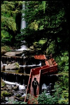 Villarica National Park, Chile