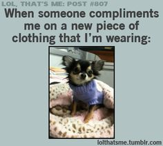 Sweet puppy demonstrates how I react to a compliment on my clothes!!! (♪♫ Click the link to hear the music and see the little show ♪♫)