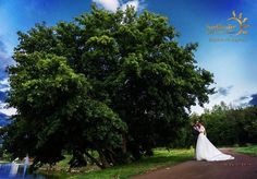 Photo: www.facebook.com/IosifMiclausPhotography Sun Garden, Wedding Night, Facebook, Elegant, Classy, Honeymoon Night, Chic