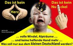 """http://qpress.de/2013/08/03/bundestagswahl-2013-zugelassene-metzger-parteien-des-michels-wahl-der-qual/ ⭕⭕⭕ """"Wahl Spezial"""" … und das Mündel wählt sich immer wieder in den Dreck! ✅✅✅"""