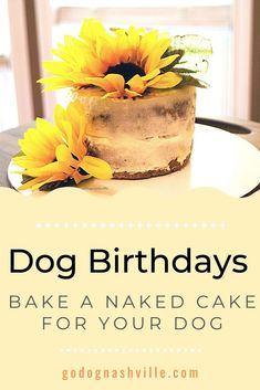 Easy DIY recipe for a dog-safe naked cake. Banana naked cake is perfect for a dog birthday party. You can have a slice, too. Dog Safe Cake Recipe, Dog Food Recipes, Cake Recipes, Types Of Flour, Dog Bakery, Diy Recipe, Dog Crafts, Cake Board, Dog Birthday