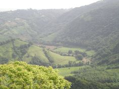 Day 13- Landscape  And old pic  Morovis, Puerto Rico