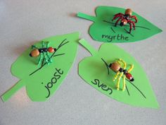 insect knutselen - Google zoeken