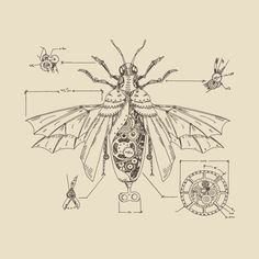 Steampunk Beetle by digster Steampunk Wings Tattoo, Steampunk Drawing, Steampunk Kunst, Steampunk Artwork, Steampunk Crafts, Beetle Drawing, Dragonfly Drawing, Robot Sketch, Steampunk Illustration