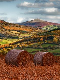 The stunning colours of autumn around the Sugar Loaf mountain (Wales) on a fine october day.