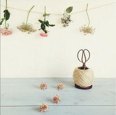 c8902d6ad41 Bride Flowers, Flowers Nature, Pastel Party, Floral Garland, Inside Me,  Greenery, Planter Pots, Dip, Flower Power