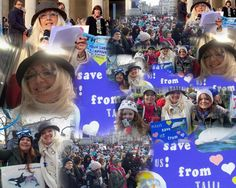 January 17th Peaceful protest raising awareness to the truth behind dolphin and whale captivity and Taiji's links yo the captive trade. Capturing the day in one photo! X