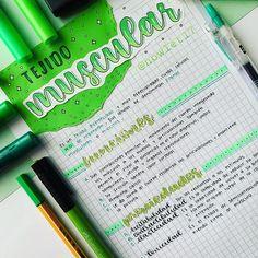 tonos verdes Apuntes en tonos verdes 迪 pin: Bullet Journal Notes, Bullet Journal School, Bullet Journal Ideas Pages, Studyblr, Bellet Journal, Medicine Notes, School Organization Notes, Class Notes, Pretty Notes