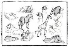 25 belos desenhos de animais para a sua inspiração 1